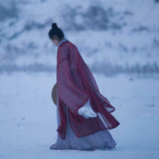 林旭阳、紫堂宿-风花雪月【天下之大 悲欢一渺】