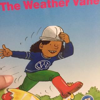 【the weather vane】在线收听_糖豆bb_荔枝fm