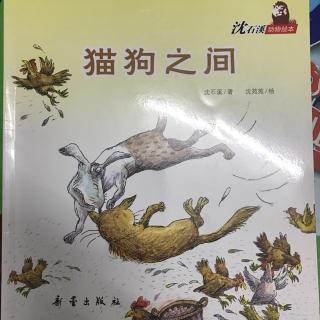 沈石溪动物绘本 | 猫狗之间