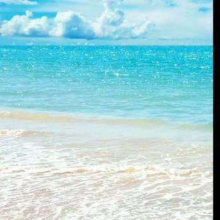 微信大海背影图片