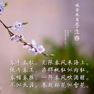 2017/2/3《减字木兰花立春》苏轼图片