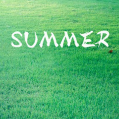 Summer~久石让