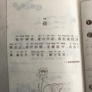 【《小学生小古文100课》4-荷】在线收听_聪马陆镇小学