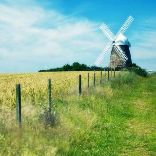 【Windy Hill---羽肿】在线收听_纯音·印象_荔