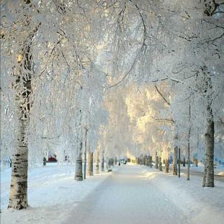 我只是还欠你一次雪中漫步