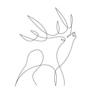 鹿的简笔画画法步骤图