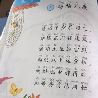 一年级课文朗读《动物儿歌》第二版