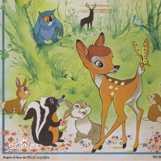 小鹿斑比13 寻找老公鹿 -在线收听 斑比工作室 荔枝