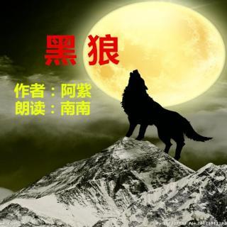 彩虹岛封魔黑狼玉0