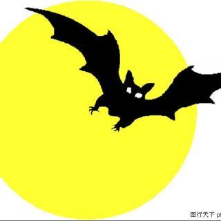 蝙蝠绣花矢量图