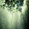 雨滴在铁片上的声音 助眠