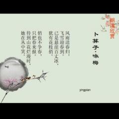 卜算子• 咏梅 毛主席