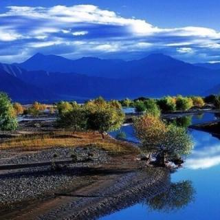 【《山中送别》王维】在线收听_北京大卫读诗