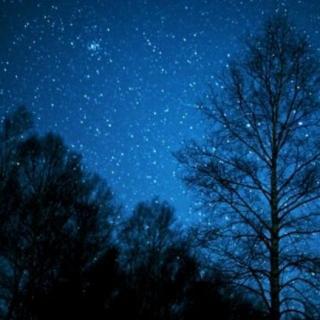 望星空图片
