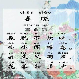 【8春晓轻松唱会小学生必背古诗70首--胡婷婷