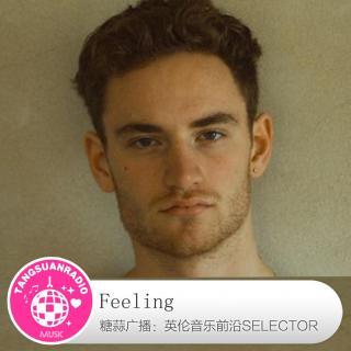糖蒜爱音乐之The Selector:Feeling