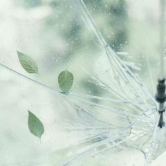 微雨 · Raindrops - S.E.N.S.