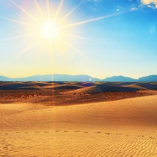 撒哈拉的故事——沙漠中的饭店