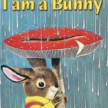 i am a bunny 《我是一只小兔子》