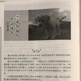 他       文/季义锋 播音/老鹰