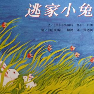 【逃家小兔】在线收听_小雨点妈妈讲故事_荔枝