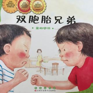 数学绘本 双胞胎兄弟