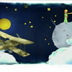 小王子【第一章】每个大人曾经都是孩子