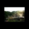 《炊烟树》文:远方/诵:闵剑