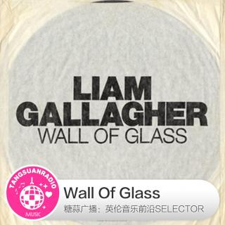 糖蒜爱音乐之The Selector:Wall Of Glass