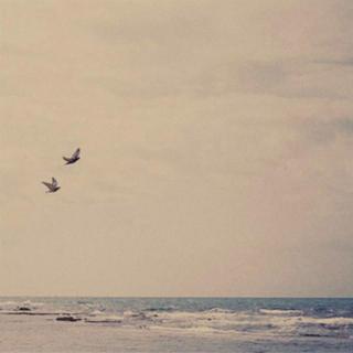 平淡生活里的温柔梦想