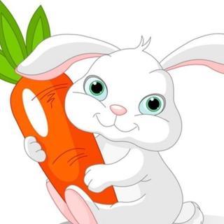小白兔的胡萝卜