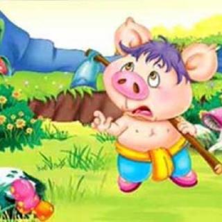 小白兔和小胖猪的故事