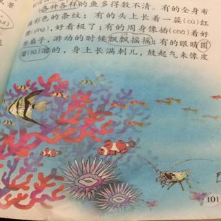 【可爱的西沙群岛】在线收听_博博,涵涵读课文_荔枝fm