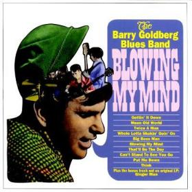 Tea for One/孤品兆赫-181, 布鲁斯/Barry Goldberg-Blowing My Mind, 1966, Pt.1