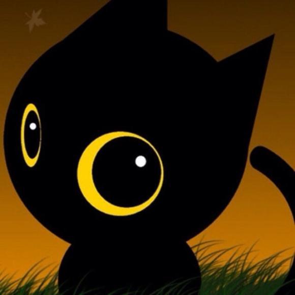 qq头像可爱纯黑猫超清
