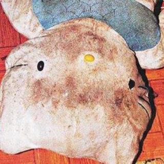 最真实的灵异事件HelloKitty藏尸案