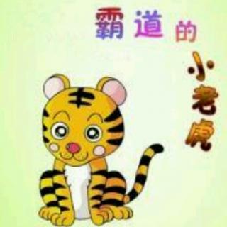 霸道的小老虎