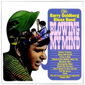 Tea for One/孤品兆赫-184, 布鲁斯/Barry Goldberg-Blowing My Mind, 1966, Pt.2