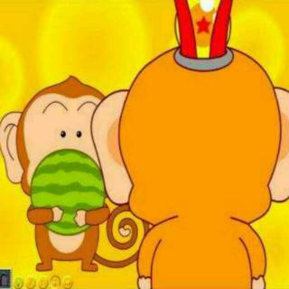 猴子吃西瓜