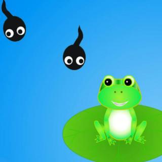 小蝌蚪的故事