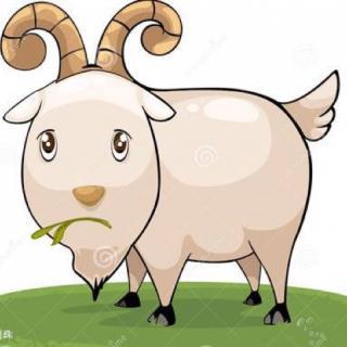 可爱驴微信头像