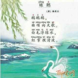 【咏鹅】在线收听_丫丫的唐诗旅行_荔枝fm