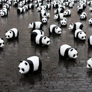 国际熊猫节特别节目