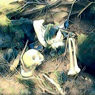 日本自杀圣地——青木原树海