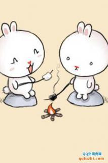 大白兔和小白兔的故事