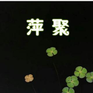 萍聚二胡简谱歌谱