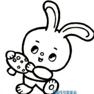兔子图案大全图片