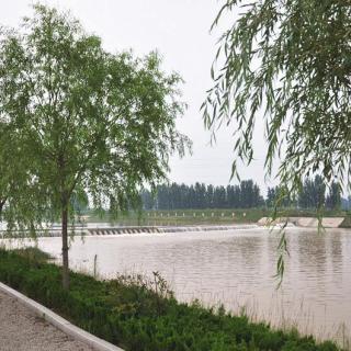 La administración eficiente de los ríos trae resultados positivos a la Ciudad de Rizhao