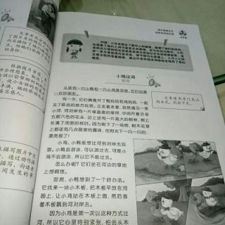 【B-小鸡过河-童心圆作文】在线收听_卢平植的钱高中罚图片