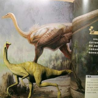 恐龙星球白垩纪【似鸡龙】-26